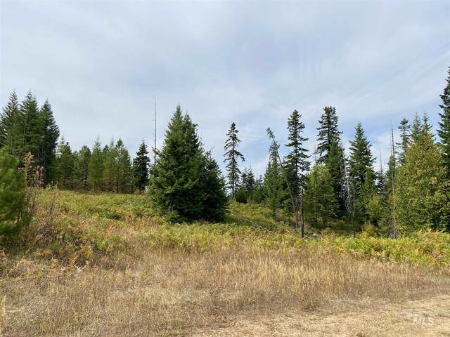 TBD Parcel 5 Fox Meadows, Orofino, ID 83544 (MLS #98781572) :: Juniper Realty Group