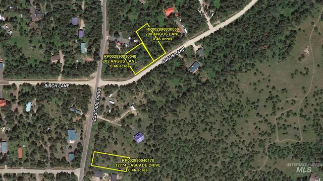 TBD Angus Lane, Donnelly, ID 83615 (MLS #98781932) :: Bafundi Real Estate
