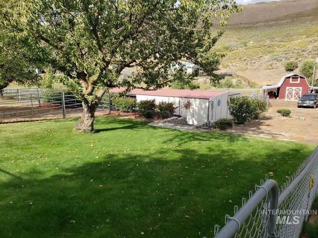 987 Tammany Cr Road, Lewiston, ID 83501 (MLS #98782236) :: Story Real Estate