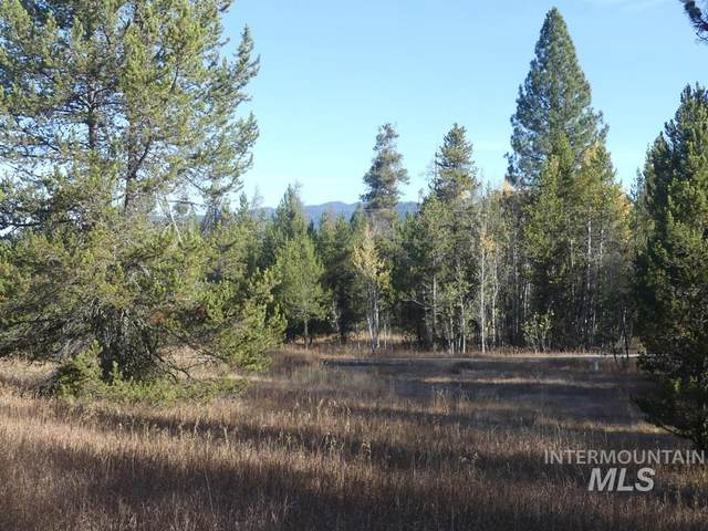 77 W Prospector, Cascade, ID 83638 (MLS #98783779) :: Navigate Real Estate