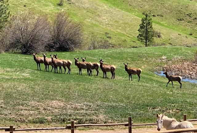 TBD Pine Heights, Boise, ID 83716 (MLS #98786729) :: Jon Gosche Real Estate, LLC