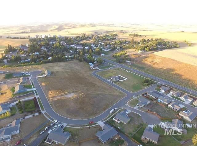 313 Welle Drive, Uniontown, WA 99179 (MLS #98790060) :: Beasley Realty