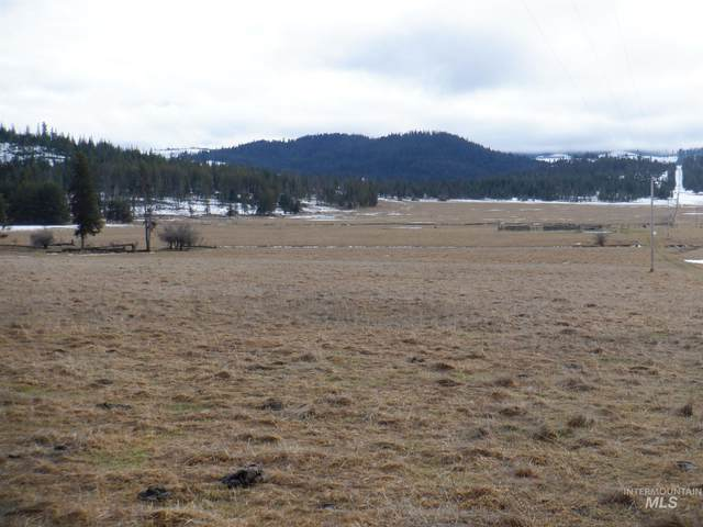 NKA Carpenter Creek, Fernwood, ID 83830 (MLS #98790484) :: Epic Realty