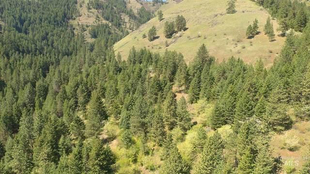 Lot 80 Twin River Ranch Amend #1, White Bird, ID 83554 (MLS #98797110) :: Haith Real Estate Team