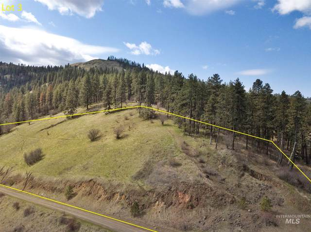 TBD Amos Bench Road Lot 3, Lenore, ID 83544 (MLS #98798005) :: Epic Realty