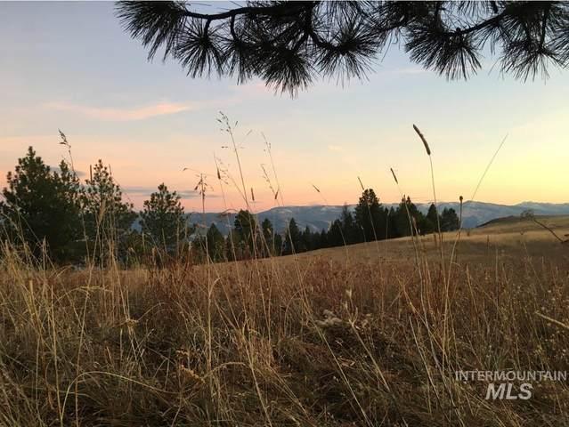 Lot 30 & 31 Elk Run Rd, Cottonwood, ID 83522 (MLS #98798184) :: Build Idaho
