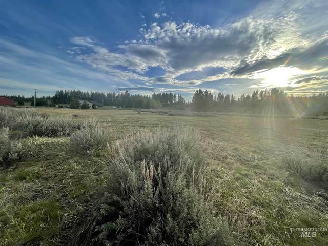 13851 Farm To Market Rd, Mccall, ID 83638 (MLS #98798258) :: New View Team
