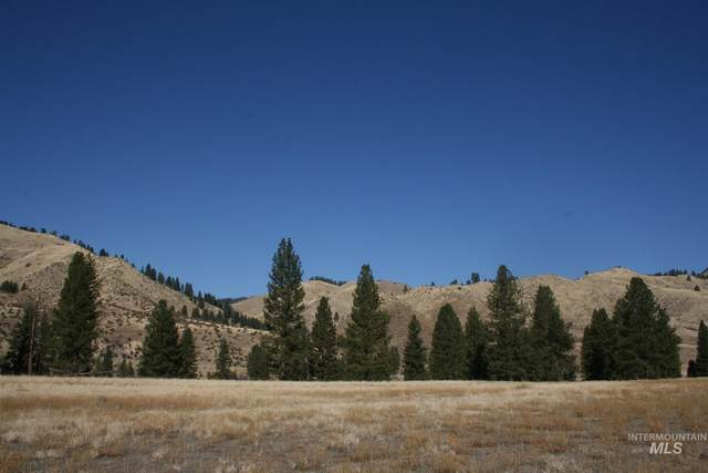 TBD Blk 1 Lot 2 Payette River Heights, Garden Valley, ID 83622 (MLS #98798775) :: Full Sail Real Estate