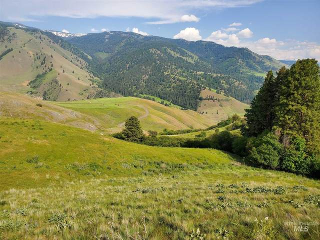tbd Whitewater Wilderness Rd, Pollock, ID 83547 (MLS #98799170) :: Team One Group Real Estate