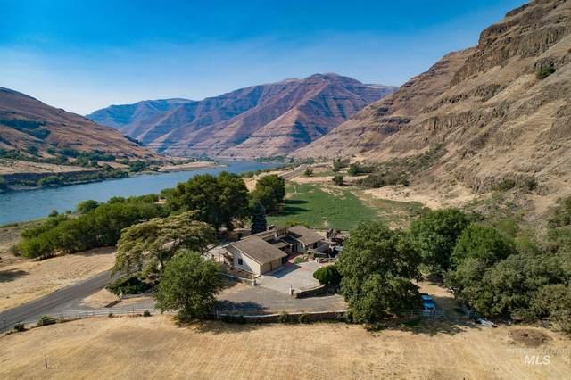17638 Snake River Road, Asotin, WA 99402 (MLS #98811930) :: Epic Realty