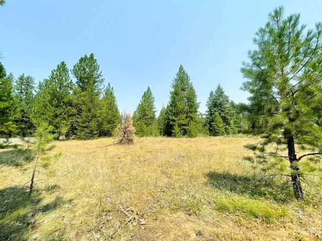 TBD Whitefield Lane, Mccall, ID 83638 (MLS #98813740) :: Idaho Life Real Estate