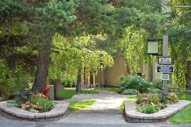 2377 Indian Springs Condo Dr, Sun Valley, ID 83353 (MLS #98816129) :: Scott Swan Real Estate Group