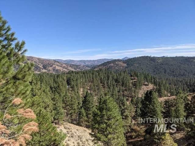 10 Sperry Lode Loop Rd, Boise, ID 83716 (MLS #98819192) :: Scott Swan Real Estate Group