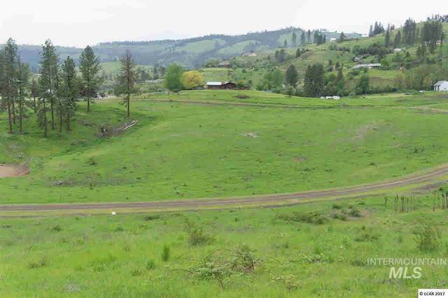 lot 10 River View Estates, Kamiah, ID 83536 (MLS #319112) :: City of Trees Real Estate