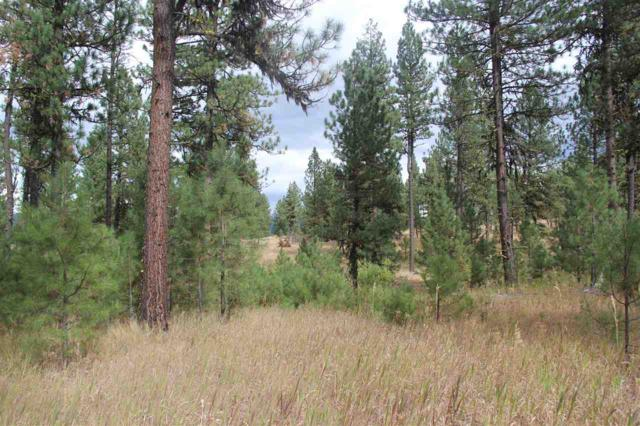 Lot 30 Timber Ridge Drive, New Meadows, ID 83654 (MLS #98631149) :: Zuber Group