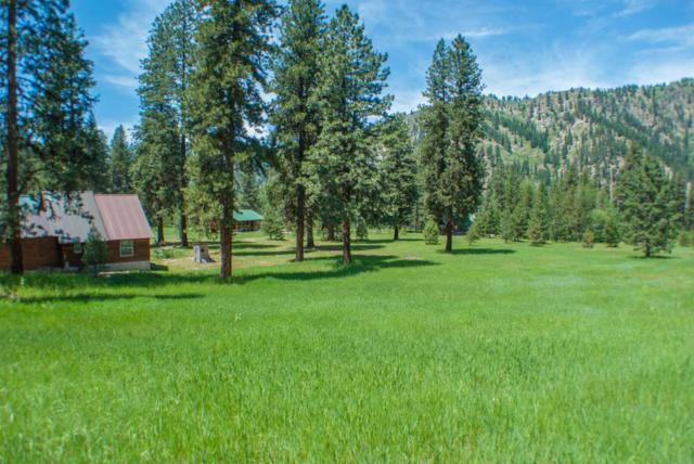 Lot 10 Alder Drive, Lowman, ID 83637 (MLS #98640420) :: Boise River Realty