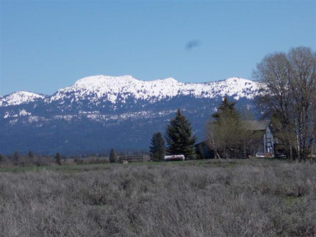 3378 West Mountain Road, Mccall, ID 83638 (MLS #98642374) :: Zuber Group