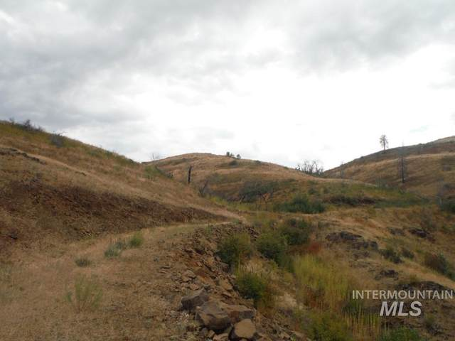Lot 2 Middle Fork Rd, Council, ID 83612 (MLS #98682707) :: Epic Realty