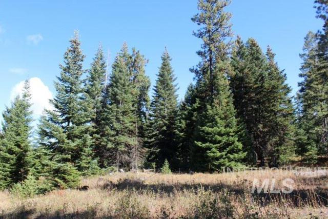 RP32N03W220100 Lewis County, Craigmont, ID 83543 (MLS #98682895) :: City of Trees Real Estate