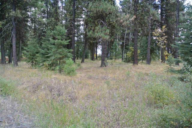Lot 6 Blackhawk Lake Rd, Mccall, ID 83638 (MLS #98688760) :: Jon Gosche Real Estate, LLC