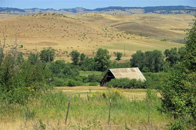 2549 Council Cuprum Road, Council, ID 83612 (MLS #98720801) :: New View Team