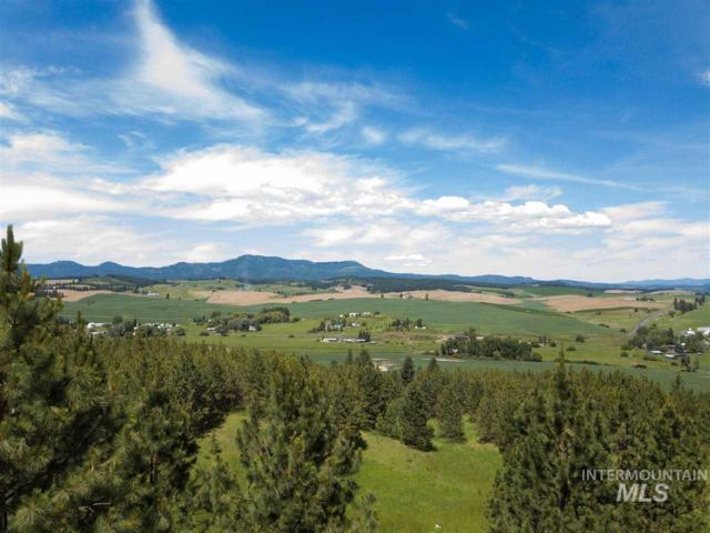 TBD #7 Katnook Lane, Moscow, ID 83843 (MLS #98723847) :: Boise River Realty