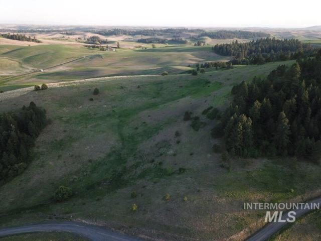 TBD #10 Katnook Lane, Moscow, ID 83843 (MLS #98723848) :: City of Trees Real Estate
