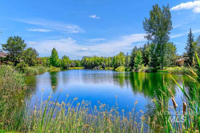 605 W Water Grove Drive, Eagle, ID 83616 (MLS #98727531) :: Jon Gosche Real Estate, LLC