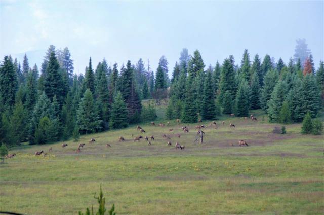 820-A & B Sweeney Hill Road, Elk City, ID 83525 (MLS #98729880) :: Adam Alexander