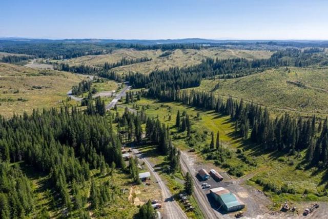 146 Bald Mountain Road, Pierce, ID 83546 (MLS #98731600) :: Juniper Realty Group