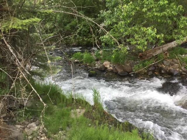 23 Hillman Basin Rd, New Meadows, ID 83654 (MLS #98736192) :: New View Team
