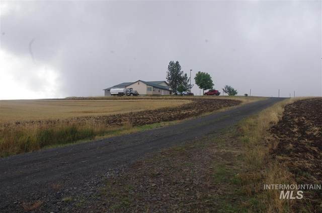 8726 Highway 11, Orofino, ID 83544 (MLS #98745612) :: City of Trees Real Estate