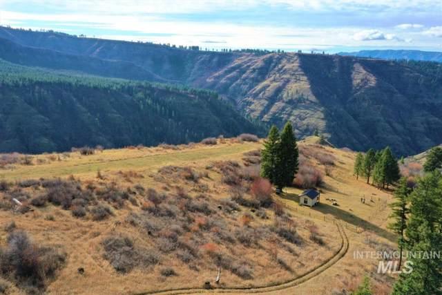 Pinnacle Ridge Trail #325, Grangeville, ID 83530 (MLS #98766656) :: Haith Real Estate Team