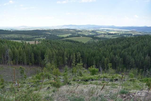 1220 Rock Creek, Potlatch, ID 83855 (MLS #98797599) :: Juniper Realty Group