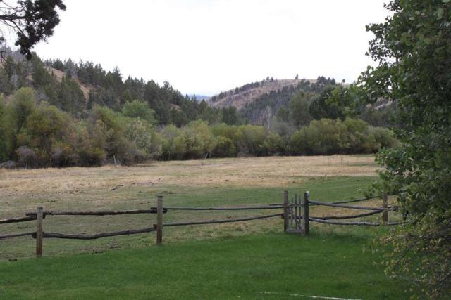 1 Boulder/Meadow Creek, Oreana, ID 83650 (MLS #98615624) :: Boise River Realty