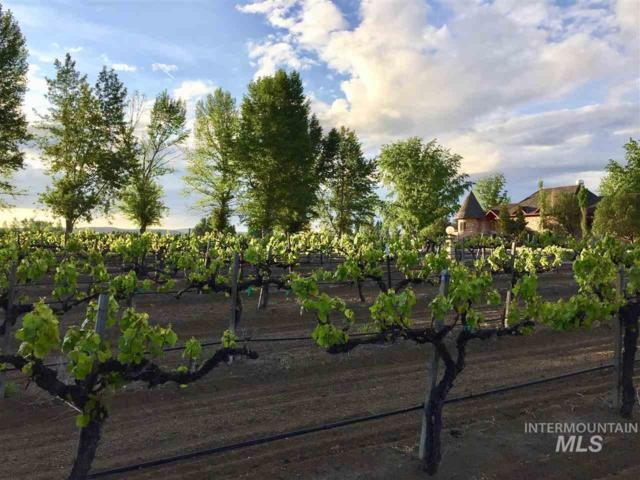 1289 Madison Ave., Glenns Ferry, ID 83623 (MLS #98685906) :: Full Sail Real Estate