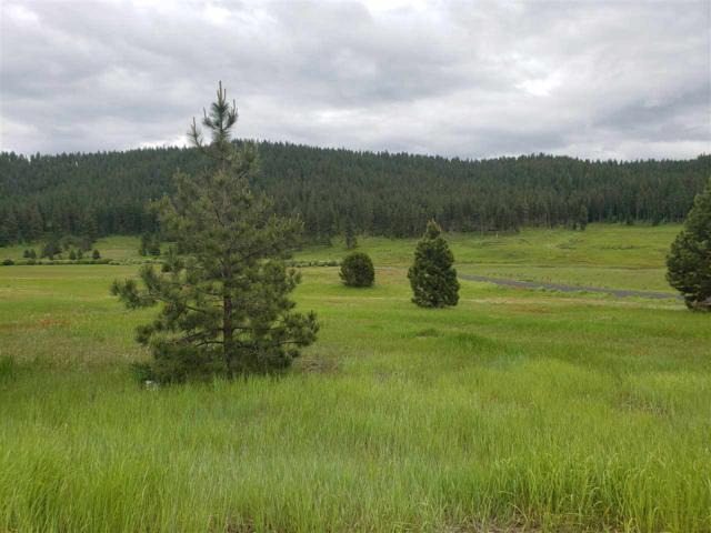 lot 26 Tbd Zoon Lane, Donnelly, ID 83615 (MLS #98696132) :: New View Team