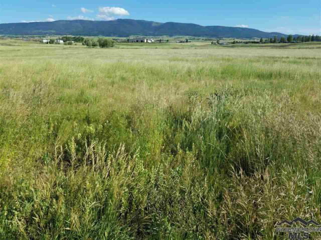 431 Whitetail Drive, Grangeville, ID 83530 (MLS #98718676) :: Juniper Realty Group