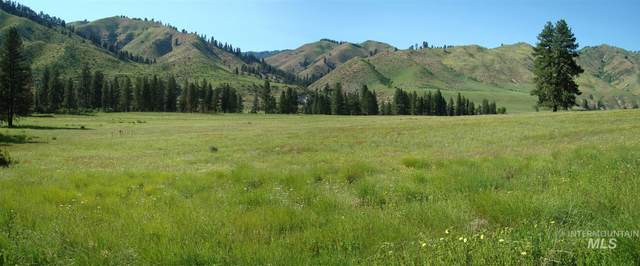 TBD Blk 1 Lot 2 Payette River Heights, Garden Valley, ID 83622 (MLS #98798775) :: Haith Real Estate Team