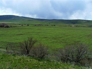 1731 N Crane Rd, Midvale, ID 83645 (MLS #98679419) :: Jackie Rudolph Real Estate