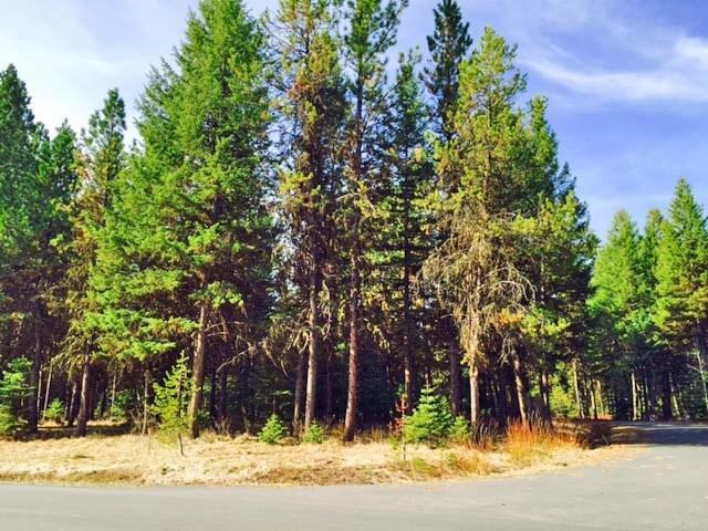 Lot 6 Whispering Pines Court, Mccall, ID 83638 (MLS #98613044) :: Zuber Group
