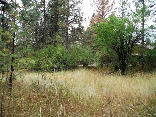 Lot 21 Warm Springs Amd 1, Garden Valley, ID 83622 (MLS #98623552) :: Boise River Realty