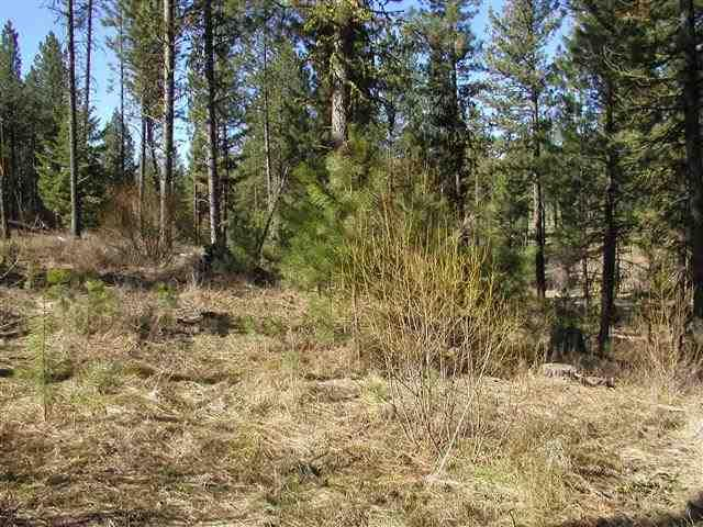 Lot 1 Short Line Drive, New Meadows, ID 83654 (MLS #98631111) :: Team One Group Real Estate