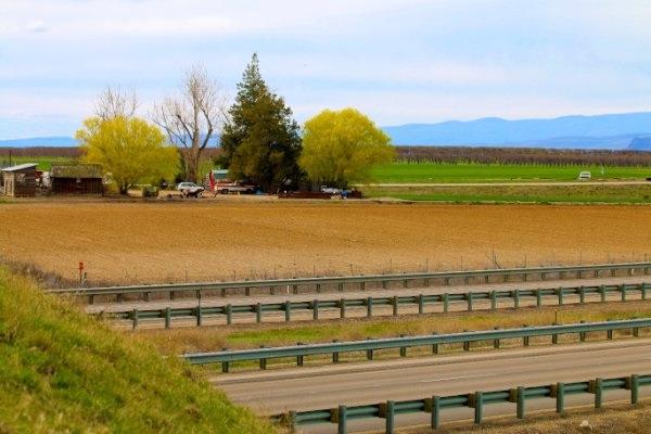 6000 Hwy 95, Fruitland, ID 83619 (MLS #98642978) :: Bafundi Real Estate