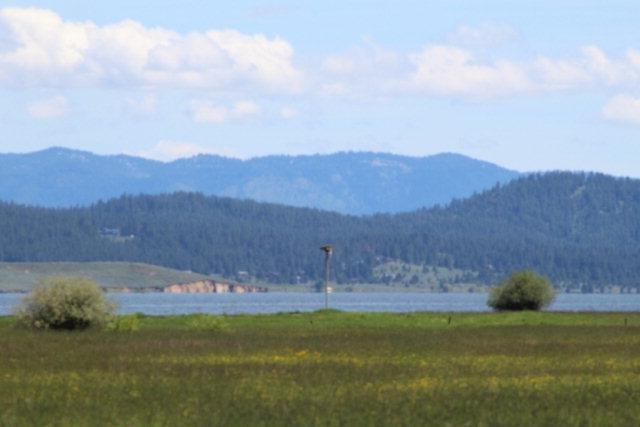 19 Northlake Lane, Donnelly, ID 83615 (MLS #98660201) :: Zuber Group