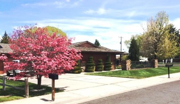 312 Casa Grande Ct., Twin Falls, ID 83301 (MLS #98660878) :: Boise River Realty