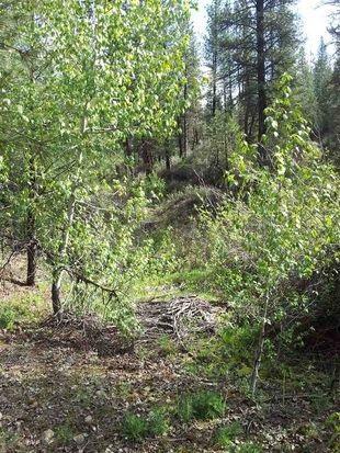 540 Elk Creek Rd, Idaho City, ID 83631 (MLS #98663051) :: Build Idaho