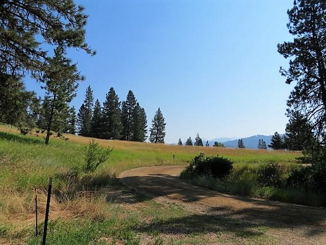 Lot 33 Scriver Woods, Garden Valley, ID 83622 (MLS #98665982) :: Boise River Realty