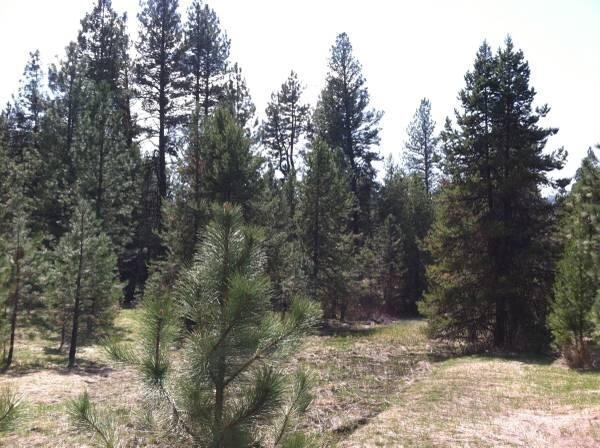 28 & 30 Ridge Dr., Cascade, ID 83611 (MLS #98666164) :: Boise River Realty