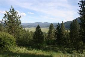 Lot 79 and 80 White Pine, Garden Valley, ID 83622 (MLS #98667800) :: Jon Gosche Real Estate, LLC